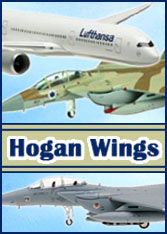 Search for [Hogan Wings]