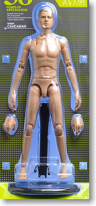 Hot Toys TrueType - Caucasian Male (New Generation Slim Body  Version)