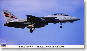 F-14A Tomcat `Black Knights History` (Plastic model)