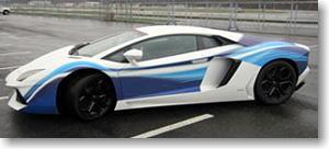 ランボルギーニ  アヴェンタドール `ボーイング ` (ホワイト/ブルー) (ミニカー)