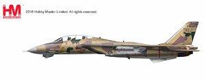F-14AM トムキャット `イラン・イスラム共和国空軍 2014` (完成品)