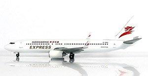 B737-800 香港エクスプレス航空 (完成品)
