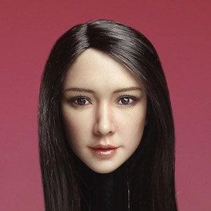 1/6 フィギュア用ヘッド/ アジアン フィメール ブルネットヘア ロングストレート SDH003-A (ドール)