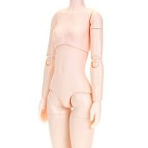 24cm Female Body Bust Size M (Natural) (Fashion Doll)