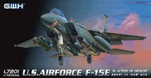 U.S.Airforce F-15E in Action of OEF&OIF (Plastic model)