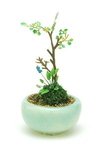 THE BONSAI 1/12 Group planting w/Round pod(Turquoise) (Fashion Doll)