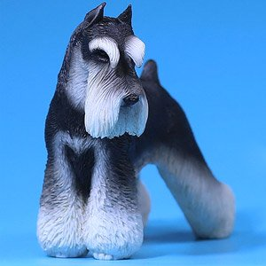 Miniature Schnauzer 002 1/6 Figure MRZ019-002 (Fashion Doll)