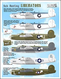 SW B-24 Liberators (Decal)