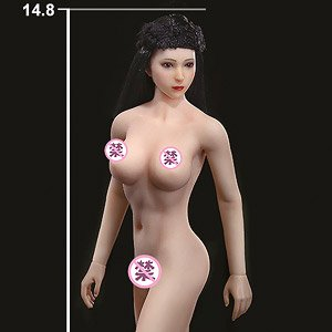 Super Flexible Female Seamless Body with Stainless Steel Skeleton Suntan / Medium Breast (Fashion Doll)