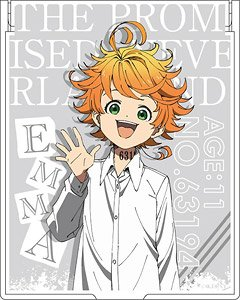 The Promised Neverland Mirror Emma Anime Toy Hobbysearch Anime
