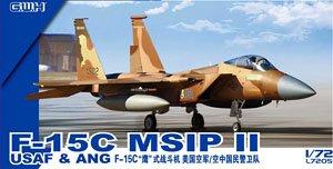 F-15C MSIPII USAF & ANG (プラモデル)