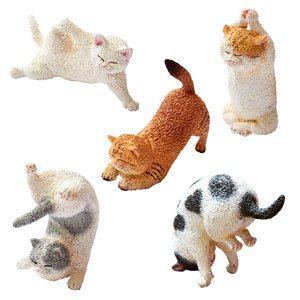 Animal Life Baby Yoga Cat Set Of 6 Anime Toy Hobbysearch Anime Goods Store
