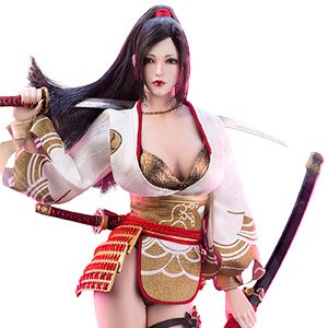 Ancient Japanese Heroine Series Nohime (Fashion Doll)