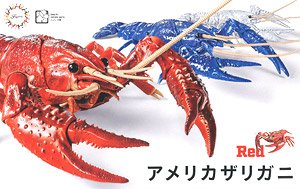 Biology Edition Crayfish (Red) (Plastic model)