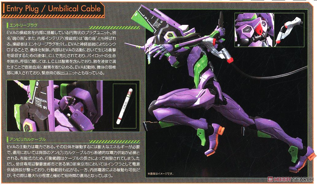 Multipurpose Humanoid Decisive Weapon, Artificial Human Evangelion Unit-01 (RG) (Plastic model) About item3