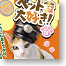 Choco Egg I Love Pet! 2 10 pieces (Shokugan)