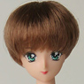 27cm Wig Short M (Brown) (Fashion Doll)