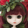 Little Pullip+ / Princess Rose (Fashion Doll)