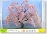 Japanese Scenery Series `MiniJapan` #16 Weeping Cherry (1pc.) (Model Train)