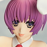 V.I.P Rare Selection 2010 Winter Illustrated by Kohaku Sumeragi [Aiba Minori] (PVC Figure)