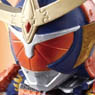 The Kamen Riders - Rider Sengoku period 10 pieces (Shokugan)