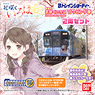 B Train Shorty Noto Railway `Hanasaku Iroha Home Sweet Home the Movie` Wrapping Train #NT202 + Type NT200 Nomal Car (2-Car Set) (Model Train)