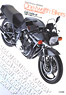 Model Graphix Archives 1/12 Bikers [Production Motorcycle] (Book)