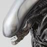 SCI-FI Revoltech Series No.001 Alien -Renewal Pac...