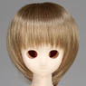 50cm Wig New Short Hair 7-8inch (Ash Gold) (Fashion Doll)