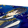 Bushiroad Storage Box Collection Vol.107 [Mikazuki Munechika] (Anime Toy)
