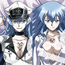 Akame ga Kill! Dakimakura Cover #2 Esdeath (Anim...