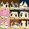 Ace of Diamond Pitacole Rubber Strap vol.2 12 pieces (Anime Toy)