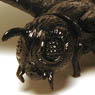 Jet Black Object Collection Mothra 1961 (Completed)