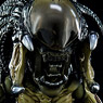 [Hybrid Metal Figuration] #032: AVP2 - Predalien (Completed)