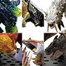 Capcom Figure Builder Monster Hunter Standard Model Plus Vol.16 (Set of 6) (Completed)